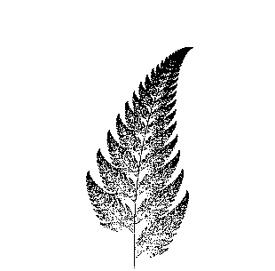 Fern drawn with an IFS